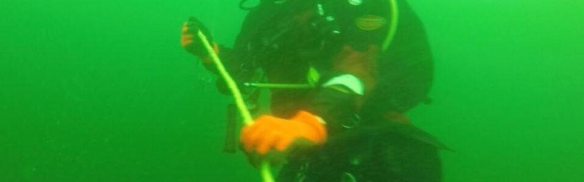 Noordzeeduiken
